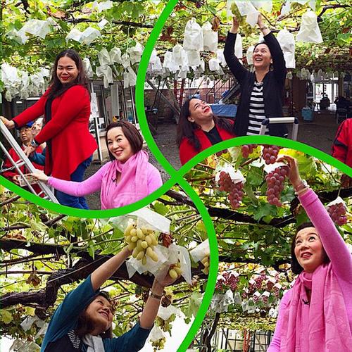 PHOTOS: #KrisTVTheJapanDiary